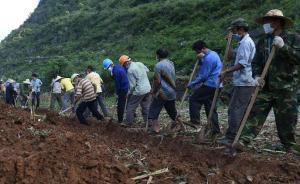 广西洪水漂浮1.6万死猪已捞500头,官方称不会流上餐桌