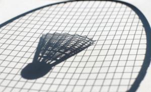河北一小学校长酒后用羽毛球拍体罚学生,致17人伤已被免职