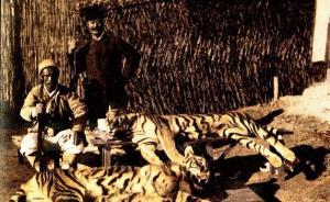 历史外刊扫描︱朝鲜人怎么看老虎