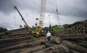 缅甸重判上百名中国伐木工背后:有内部民族矛盾也有美日挑拨