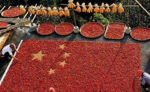 《读书》专稿︱贺桂梅:普遍的与特殊的中国经验