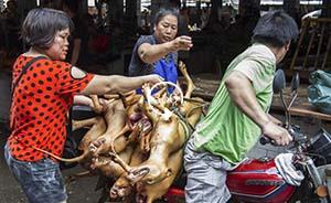 全景呈现|广西玉林狗肉节