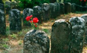 寻访无名烈士墓(下)远征军遗骨覆盖松山,山上的树都高又直