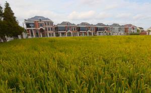 上海重点整治9区县11个地块生态环境,看看在哪里、怎么治