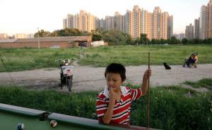 新华社揭部分开发商坐地生财:一块地捂20年,房价涨近百倍