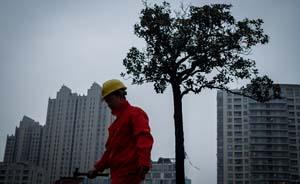 上海市发改委公布2014权力清单,纳入41项权力事项