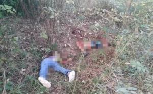 广东3名儿童在公园内遭凶杀2死1伤,嫌犯在逃疑携凶器