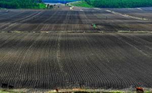 水利部:全国年均损失耕地百万亩,东北一些黑土层流失殆尽