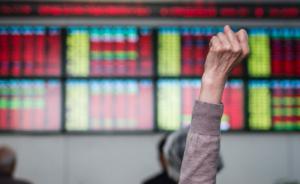 IPO重启最全解读|任泽平:满仓打新成真,总体偏利好