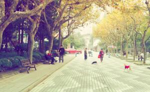 场所|上海最美空间:遛狗、运动、没有围墙……市民的空间