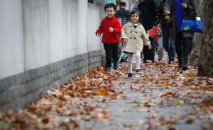 """上海""""落叶不扫""""再增6条路段:留下美景,生活垃圾改扫为捡"""