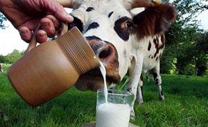 中国乳品行业掀并购浪潮,伊利首次跻身全球十强