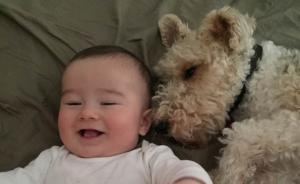 养条狗陪娃一起长大,心理专家说确有好处