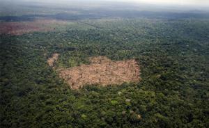 探访亚马孙雨林:在环保与经济发展间纠结,巴西碳排放量回升