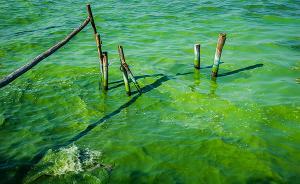 """""""十三五""""水专项聚焦京津冀和太湖,目标包括保障冬奥会需求"""