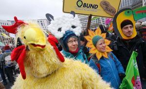 当地时间2016年1月16日,德国柏林,示威者游行,抗议工业化养殖、大规模畜牧业和基因工程。
