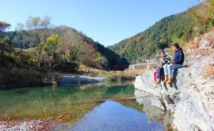 市政厅|日本的神山町:乡土远程办公