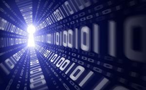 未来网谈任志强等大V被封:网络没秩序,自由就可能滋生疯狂