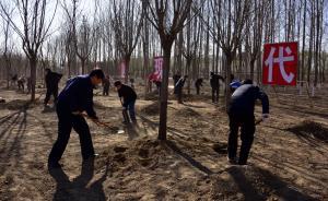 范长龙许其亮郭金龙等北京通州植树,一个多小时栽1500株