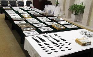 济南海关截获2800余枚蝴蝶标本,系最大宗蝴蝶标本走私案