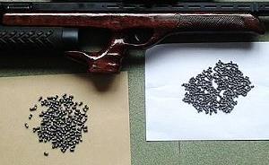 四川南充一男子遭枪击身亡,警方正调查是否气枪走火所致