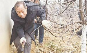 """""""太行新愚公""""、河北农业大学教授李保国逝世,享年58岁"""