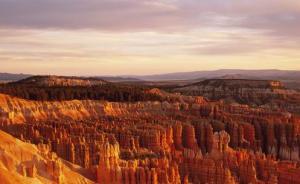 从冬眠中苏醒过来,奖励自己一个超便宜的春季美国之旅