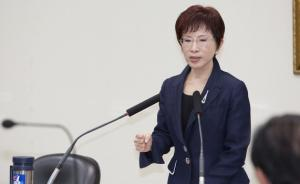 国民党主席洪秀柱:别让台湾成为诈骗集团输出地,这非常丢脸