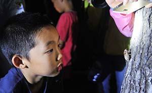 """意媒:中国告别""""虎妈""""时代?部分父母勇于突破教育体制"""