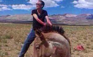 活割藏野驴肉分食,两男子虐杀国家一级保护动物被捕
