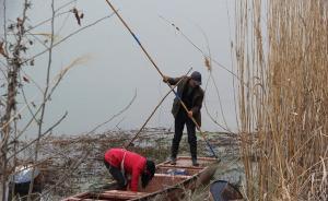 用电捕鱼破坏鱼类繁殖,南京3男子被判非法捕捞水产品罪