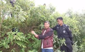 云南镇雄女出租车司机遇害案告破,嫌疑人为四川刑满释放男子
