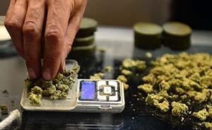 明星吸毒事件背后10问:哪些国家或地区允许合法地吸大麻?