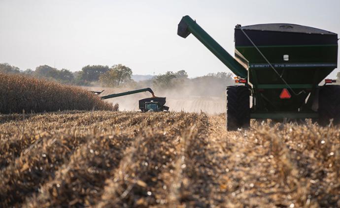 新華社:貿易戰凸顯美國農業發展隱憂