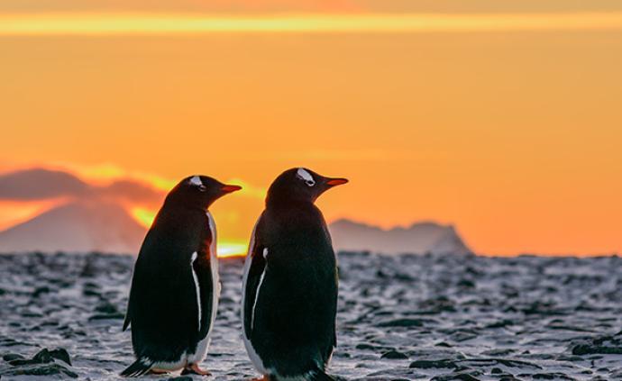 南極行·記者日志|迎接2020:在南極跨年是怎樣一種體驗