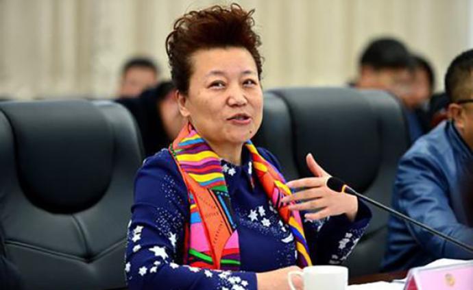 小香玉委員建議:發展鄉村藝術教育,推廣藝術公益事業