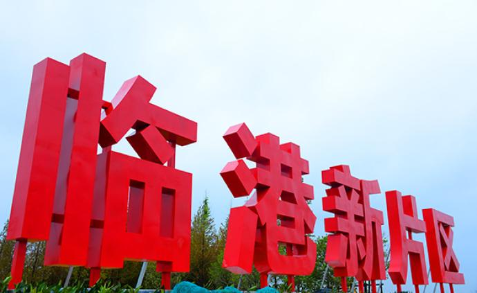 應勇:上海市為臨港新片區制定的50條特殊支持政策全部落地