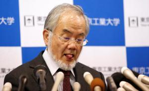 当地时间2016年10月3日,日本东京,2016年诺贝尔生理学或医学奖得主大隅良典,在与日本首相安倍晋三通电话后,吐了吐舌头。本次诺奖旨在表彰大隅良典在细胞自噬机制研究中取得的成就。