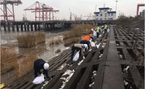 浙江抓获长江口非法倾倒垃圾案11人,两家垃圾处置公司涉案