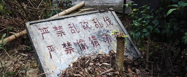 南岭自然保护区违规开发,中央环保督察要求广东报送整改方案