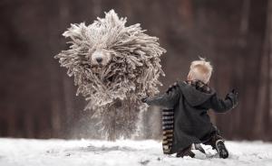 """2017年1月16日,俄罗斯圣彼得堡公园,摄影师谢利瓦史托夫(Andy Seliverstoff)拍下的一幕""""人狗乐翻天""""的画面,""""有人认为狗狗的外型看起来像雪球、或是被雪覆盖的灌木,但更多人说它像拖把。视觉中国 图"""