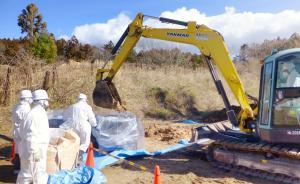 福岛电站辐射最大值每小时530希沃特,机器人2小时就损坏