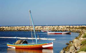 突尼斯免签了,终于能去它最棒的小岛晒个北非的太阳