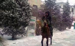快递哥雪天骑马送件被称快递界白马王子