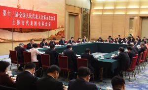 全国人大上海代表团举行全团会议,应勇殷一璀参加审议