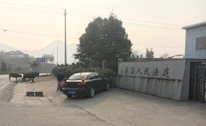 """杭州一村民被牛撞伤致死,庭审时牛主人将牛牵来欲证""""清白"""""""