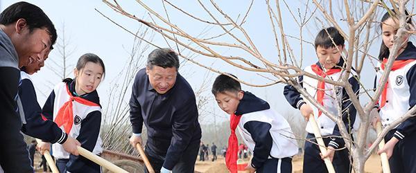 习近平参加首都义务植树活动:把造林绿化一代接着一代干下去
