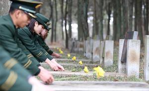 烈士墓能否迁回故乡?吉林官方:若零散安葬,可考虑遗属意愿