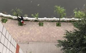 四川泸州通报太伏中学学生死亡事件尸检情况:损伤均为高坠伤