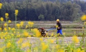 中国青年报:保障外出租地农民的权益就是保障失地农民就业权